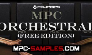 Free MPC Sounds, Samples & Expansions For All Akai MPC Samplers